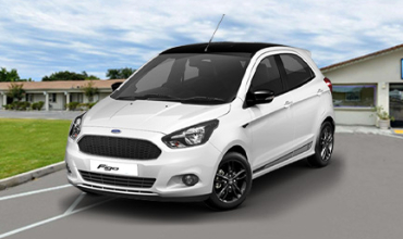 Ford Figo Car Hair